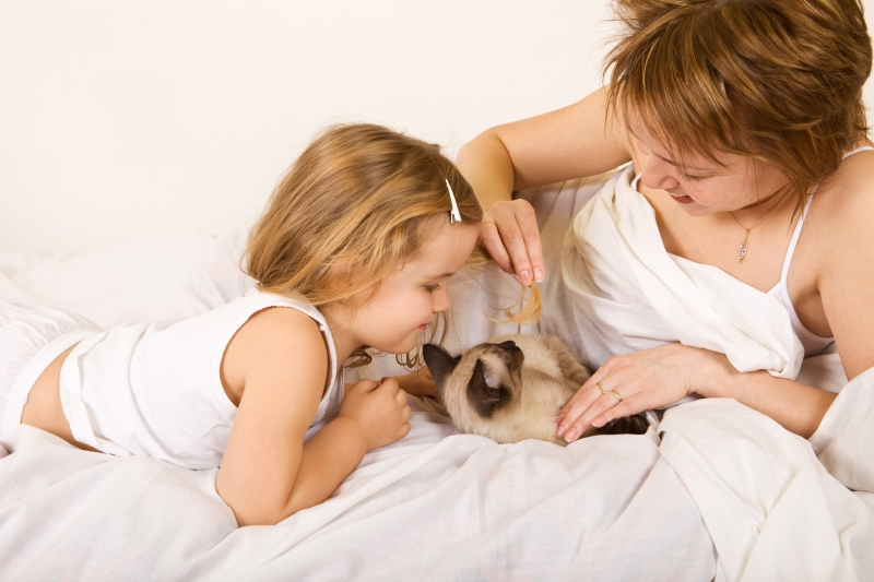 670211-little-girl-and-woman-playing-with-a-kitten